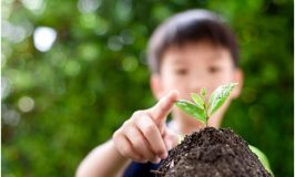 The Hidden Benefits of Gardening  or Your Kids